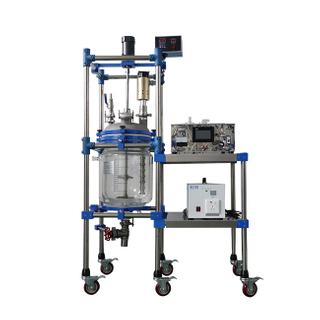 20L Customized Ultrasonic Reactor